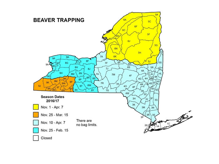 New York State map showing beaver trapping season for different areas